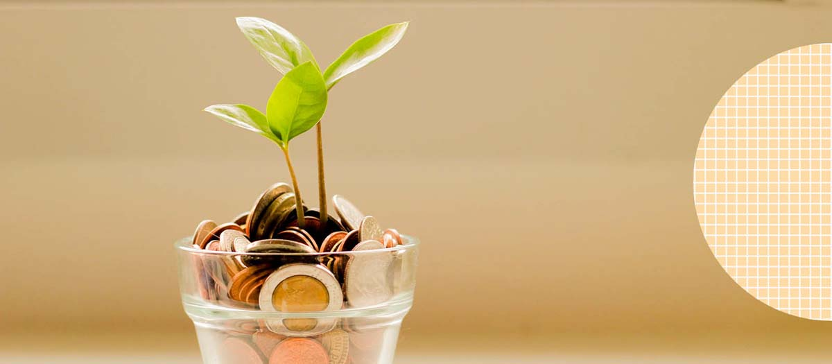 Coins in a jar with leaves growing out of it