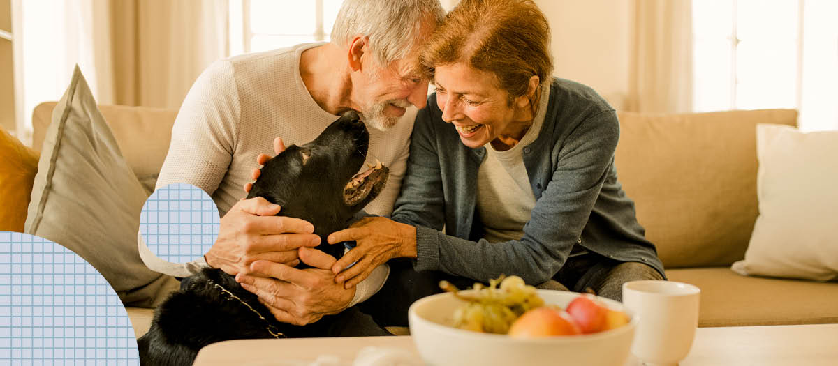 Couple petting dog with fruit bowl on coffee table